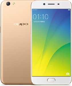 OPPO R9S Cell Phone Gold 64GB ROM 5.5-Inch Brand New Original